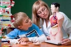 Medico e scolaro immagini stock libere da diritti