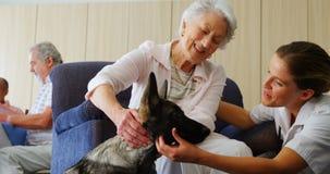 Medico femminile che interagisce con la donna senior mentre cane di coccole a casa di riposo 4k archivi video