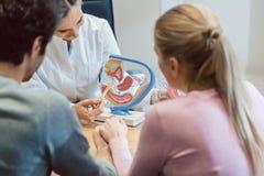 Medico nella clinica di fertilità che consiglia le coppie immagine stock libera da diritti