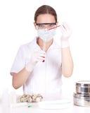 Medico o chimico della signora in laboratorio Fotografia Stock Libera da Diritti