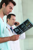 Medics looking at a scan Stock Photography