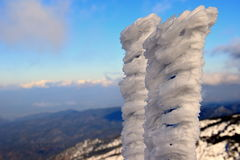 Medida congelada Foto de Stock