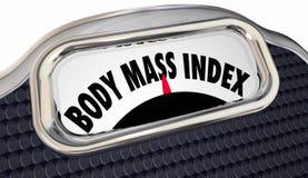 Medida de la escala BMI de las palabras de índice de masa corporal stock de ilustración