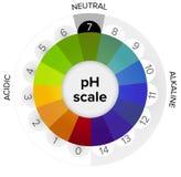 Medida de la escala del pH, indicador de presión, infographics ilustración del vector
