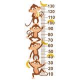 Medida del crecimiento con el mono stock de ilustración
