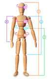 Medida del cuerpo del sastre, circuitos. Talla de ropa, pérdida de peso Foto de archivo libre de regalías