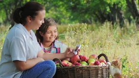 Medida para el contenido de nitratos en manzanas almacen de video