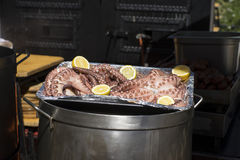 Medieval barbecue with sausages, octopus, meat, ribs and all kin Stock Image