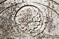 Medieval bas-relief. Of a flower carved in stone Stock Photography