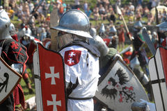 Medieval battle Royalty Free Stock Images