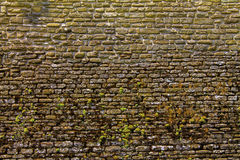 Medieval  the brick wall. Medieval old stone the brick wall Stock Photos