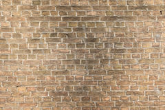 Medieval brick wall Royalty Free Stock Photography