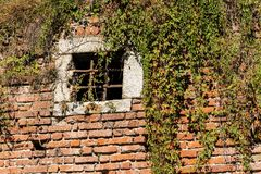 Medieval brick wall - Window with wrought iron bars. Detail of a medieval brick wall partially covered by creeper plants and  with a window with wrought iron stock photography