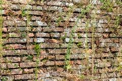 Medieval brick walls Stock Photo