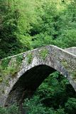 Medieval Bridge Royalty Free Stock Image
