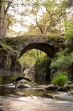 Medieval  bridge on the mountain river. On sunset Royalty Free Stock Images