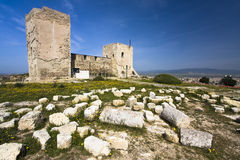 Medieval Castle. And archaeological area around Stock Images