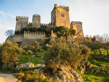 Medieval castle at Almodovar del Rio, Cordoba, Andalusia, Spain Royalty Free Stock Images