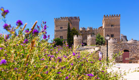 Medieval castle of Ampudia Stock Images