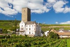Medieval castle Boosenburg Royalty Free Stock Images