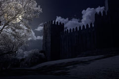 Medieval castle in a full moon night Stock Photos