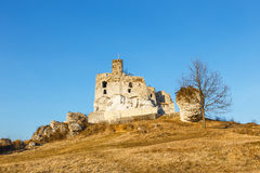 Medieval castle Mirow in Poland Royalty Free Stock Photo