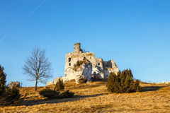Medieval castle Mirow in Poland Royalty Free Stock Photography