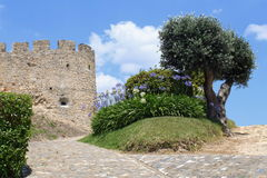 Medieval castle and olive tree. Medieval castle and an olive tree in Torres Vedras, Portugal royalty free stock photos