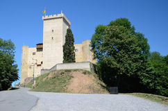Medieval castle of Phoebus in Mauvezin Stock Photography