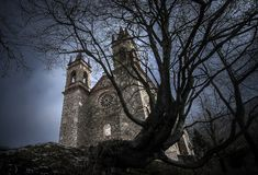 Medieval castle romanic with old dead tree in front. Medieval castle romanic with old dead tree stock photos