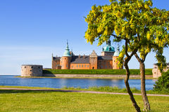 Medieval Castle in Swedish color. Stock Photos
