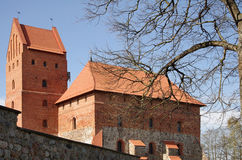 Medieval castle in Trakai Stock Photography
