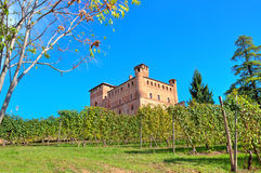 Medieval castle and vineyards in Piedmont, Italy. Royalty Free Stock Photo