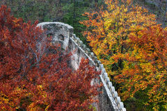 Medieval Castle Wall Battlement in Autumn Forest Royalty Free Stock Image