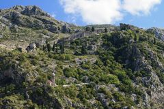 Medieval citadel in the mountains. Kotor, Montenegro Royalty Free Stock Image