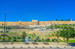 The medieval city. The medieval rampart hides the landmarks of the Temple Mount, Jerusalem, Israel Royalty Free Stock Photo