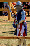 Medieval Combat Stock Images
