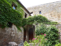 Medieval construction. Outdoor stair case and ivy in Bagnioregio. Medieval village view in Lazio, Italy Stock Image