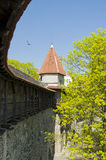 Medieval defence wall Tallinn. Medieval defence wall in Old Town. Tallinn is a medevial Hanseatic city listed as a UNESCO World Heritage Site Stock Images