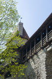 Medieval defence wall with tower. And gallery in Old Town. Tallinn is a medevial Hanseatic city listed as a UNESCO World Heritage Site Stock Photos