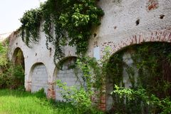 Medieval destroyed walls and plants Royalty Free Stock Photography