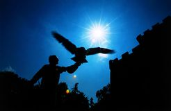 Medieval eagle hunter. Back-light of a medieval hunter Royalty Free Stock Photo