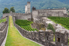 Medieval fortifications of Bellinzona Royalty Free Stock Images
