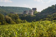 Medieval fortified Manasija monastery. Serbia Stock Image