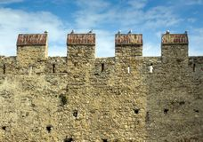 Medieval fortress wall with pigeons in Sirmione on Lake Garda, northern Italy.. royalty free stock photography