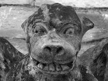 Medieval gargoyle on stone wall royalty free stock images