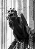 Medieval gargoyle on york minster england Royalty Free Stock Photo