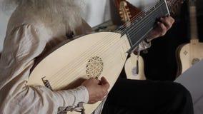 Medieval guitarist stock video footage