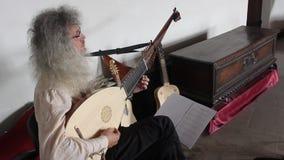 Medieval guitarist stock video