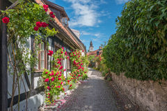 Medieval Hanse town Visby on Gotland. Medieval alley in the historic Hanse town Visby on Swedish Baltic sea island Gotland Stock Image